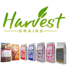 Harvest Grains
