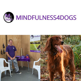 Mindfulness4dogs